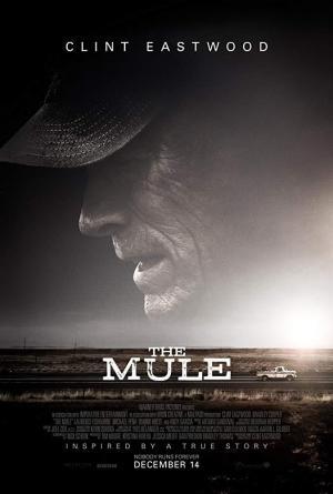 Mula (V.O.S.E.)